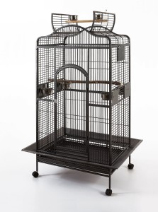 Click to Buy this Cage Now