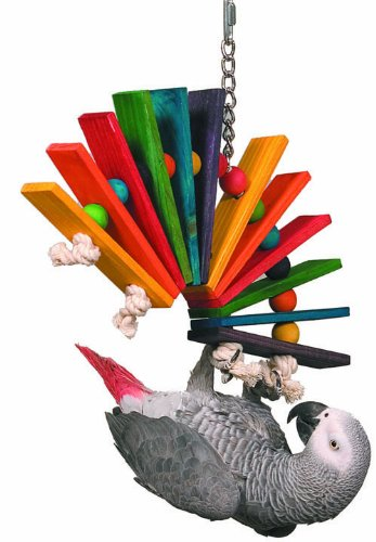 Best Foraging Toys For African Grey Parrots