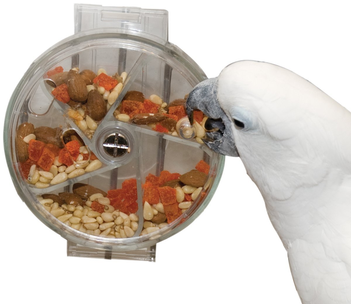 Creative Foraging Systems Foraging Wheel, 6-Inch Diameter for African Grey Parrots